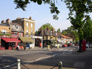 Dulwich view